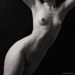 Twisted torso