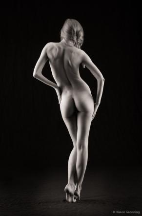 Roxana curves