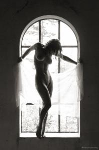 Window of elegance