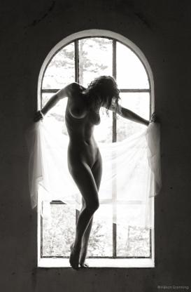 Window of elegance - with Julie B.