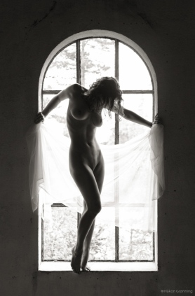 Window of elegance - with Julie B.