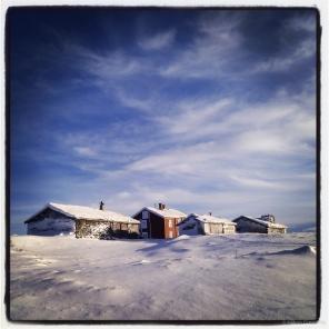 Winter Storwartz