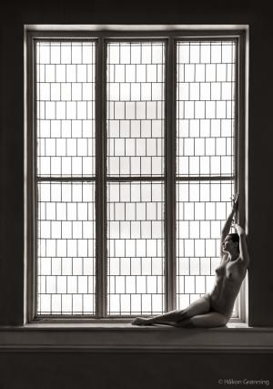 Curved corner of a window - with Naiya