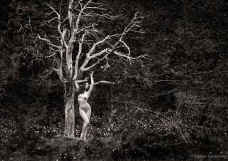 Dead tree fresh fruit - with Elle Beth