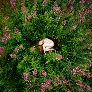 Peace between willowherbs - with Lulu Lockhart