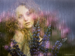 Raindrops and reflections - with Ivory Flame